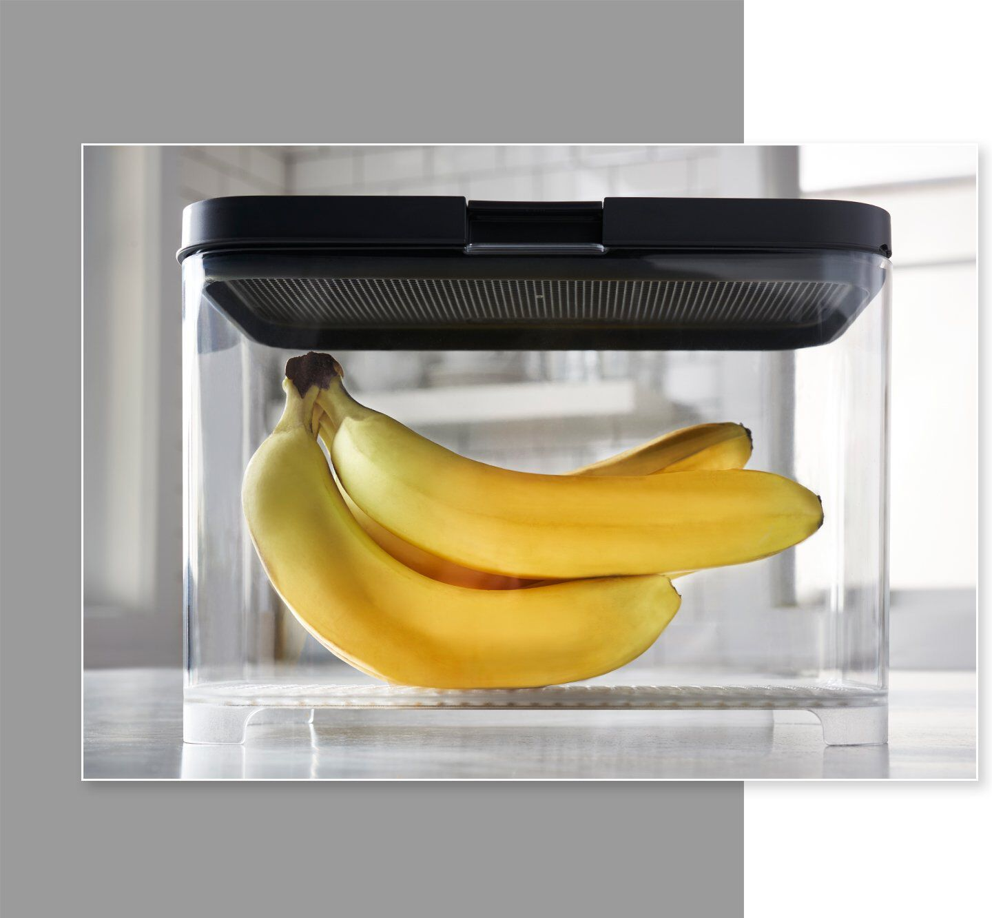 Rubbermaid FreshWorks countertop produce storage container bananas